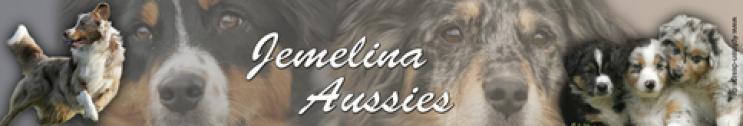 Jemelina Aussies
